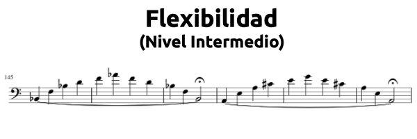 Cursos Online Curso de flexibilidad (Nivel intermedio)
